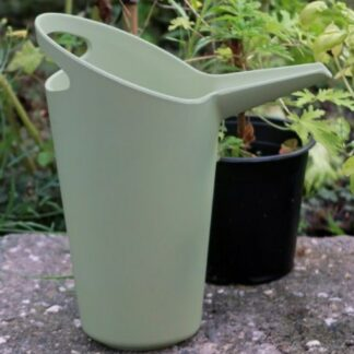 Vattenkanna grön - Zuperzozial