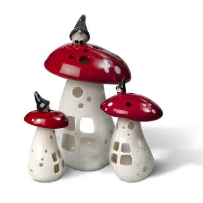 Ljuslykta Vätte på svamp
