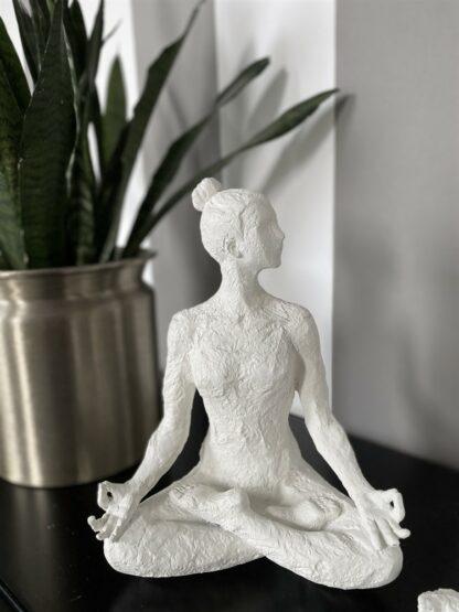 Yoga Etenia vit